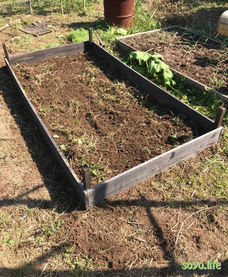 家庭菜園Box11