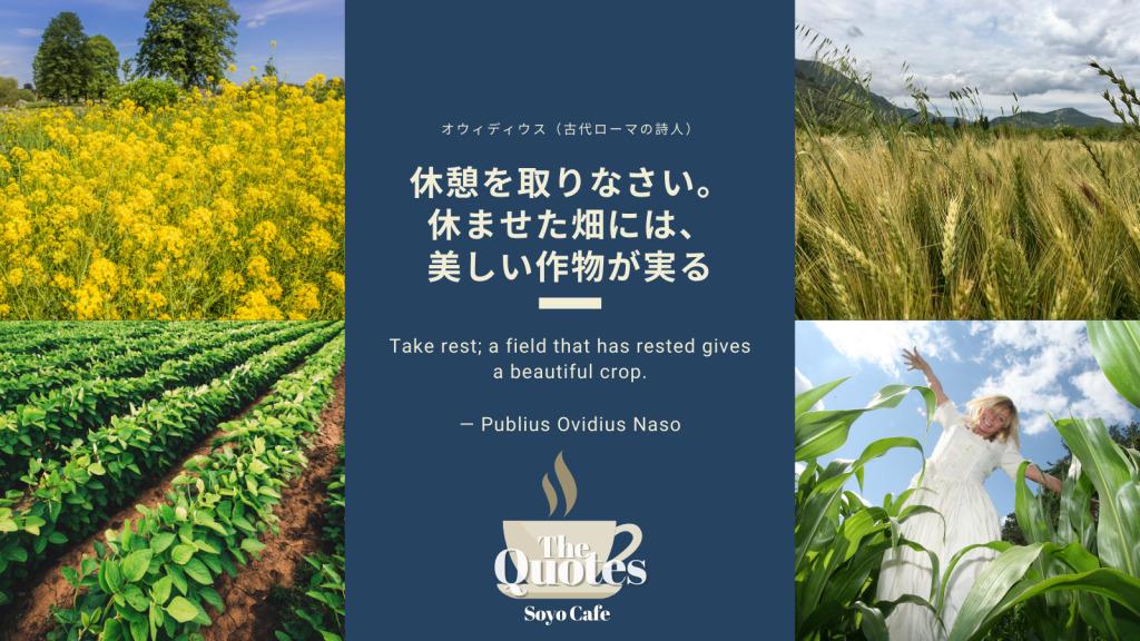 Quotes Publius Ovidius Naso